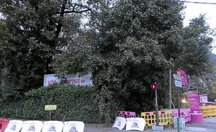 Le SMTC devrait abattre les arbres qui protègent l'entrée de la copropriété.