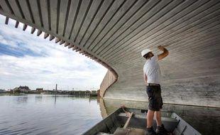 Photo publiée le 30 octobre 2015 du pont qui sert d'abri aux chauves-souris, dans la ville Monster, aux Pays-bas
