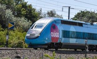 Illustration: Un TGV Ouigo passe à Neuville Vitasse, dans le Nord de la France, le 2 juin 2021.