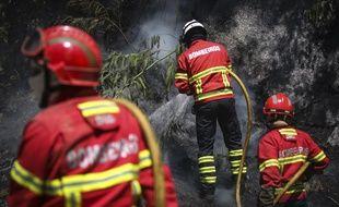 Des pompiers portugais à la lutte avec un feu de forêt en août 2018
