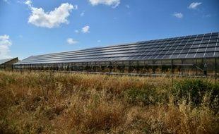 Une usine de panneaux solaires à Narbolia, en Sardaigne, le 15 juin 2015