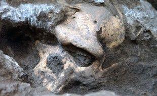 Un fossile de crâne a été retrouvé en Gérogie, à Dmanisi.
