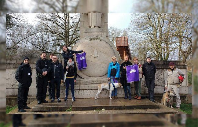 Municipales à Lille: Le parti animaliste entre dans la course au beffroi