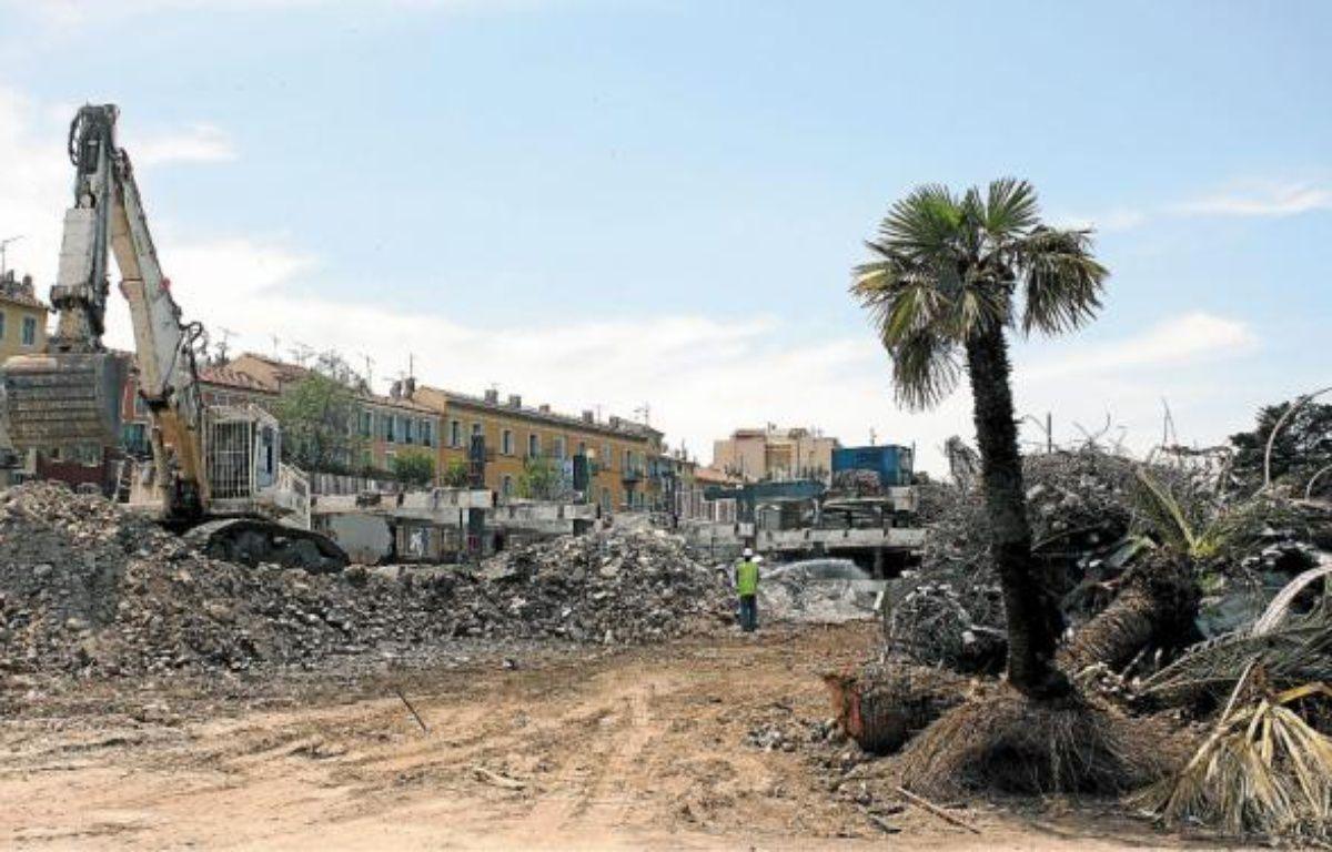Au milieu des gravats, les grands palmiers seront bientôt transférés à la pépinière municipale. –  A. SELVI / ANP / 20 MINUTES