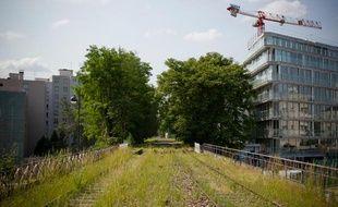 La petite ceinture, ancienne voie ferrée en rocade, pourrait devenir une promenade verte ou à nouveau accueillir du transport.
