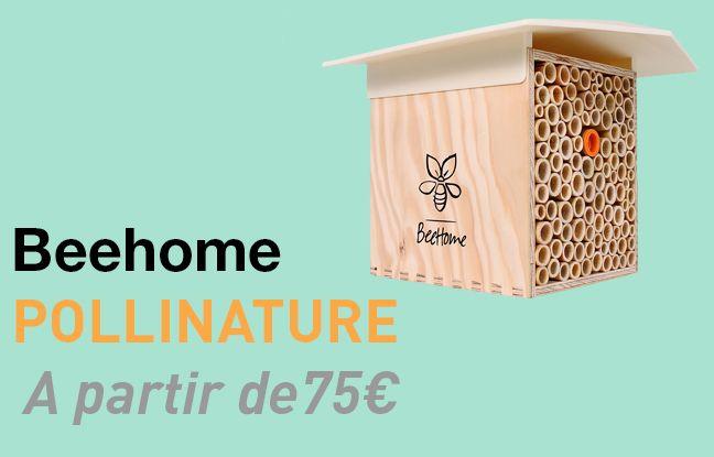 La maisonnette Beehome de Pollinature.