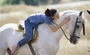 Equitation - illustration.