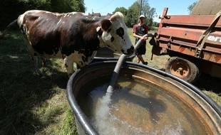 Dans l'Orne, touché par la sécheresse, les éleveurs de vaches laitières doivent apporter de l'eau dans les prés a l'aide d'une citerne.
