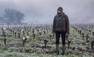 Un viticulteur du Landreau (Loire-Atlantique), dépité, après le gel du 12 avril.