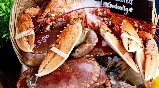 Hong Kong : Les importations de homard australien menace la sécurité nationale, selon la cheffe des douanes