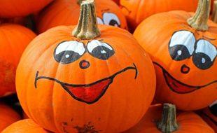 Illustration de citrouilles pour Halloween.