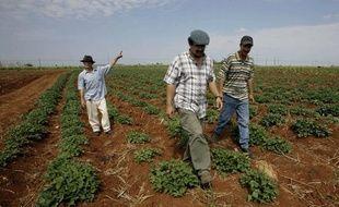 Des lauréats du prix Goldman 2010 pour l'agriculture bio à Cuba, le 11 avril 2010.