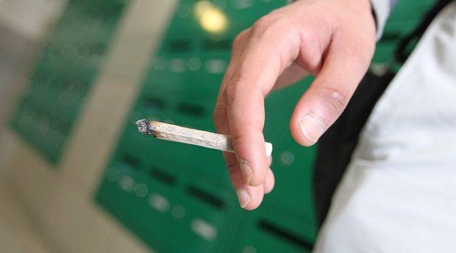 strasbourg un auto test vendu l unit qui d tecte le cannabis dans les urines. Black Bedroom Furniture Sets. Home Design Ideas