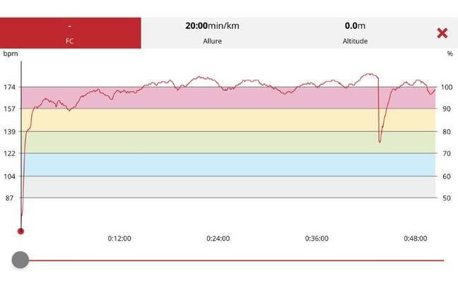 Une courbe de fréquence cardiaque durant une sortie running sur le A360 de Polar.