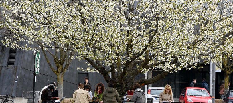 Photo d'illustration du campus universitaire de Saint-Martin-d'Hères, près de Grenoble. JEAN-PIERRE CLATOT