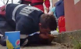 Un pompier roumain pratique massage cardiaque et bouche à bouche pour sauver un chien.