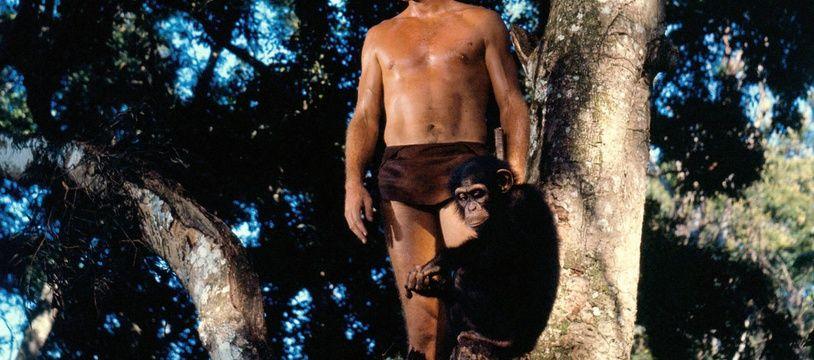 Ron Ely dans le rôle de Tarzan dans les années 1960