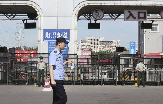 Chine: La volaille vivante est en train d'être bannie des marchés