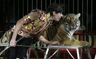 Le dresseur de fauves Frédéric Edelstein se produit le 27 décembre 2005 sous le chapiteau du Cirque Pinder-Jean Richard.