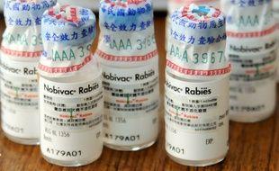 Des vaccins anti-rabiques utilisés à Taïwan.