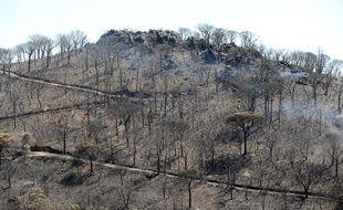 Le paysage ravagé par les flammes à la Croix-Valmer.
