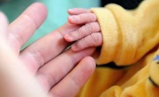 Un nouveau-né agrippe un doigt de sa mère dans un hôpital de Lens, le 17 septembre 2013