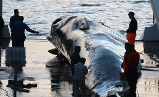 La baleine est un mets traditionnel au Japon, bien que les consommateurs se fassent rare, désormais.