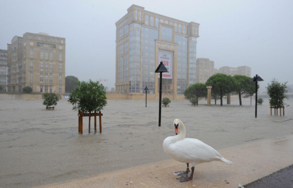 Les rues inondées de Montpellier, le 29 septembre 2014. – SYLVAIN THOMAS / AFP