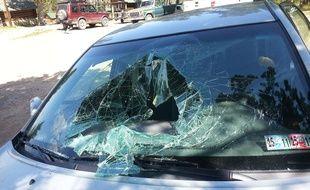Un ours enfermé dans une voiture s'est échappé en passant par le pare-brise.