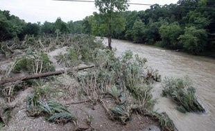 Une partie de la forêt Ouachita a été ravagée par la crue des rivières Caddo et Little Missouri, dans l'Arkansas, le 11 juin 2010.
