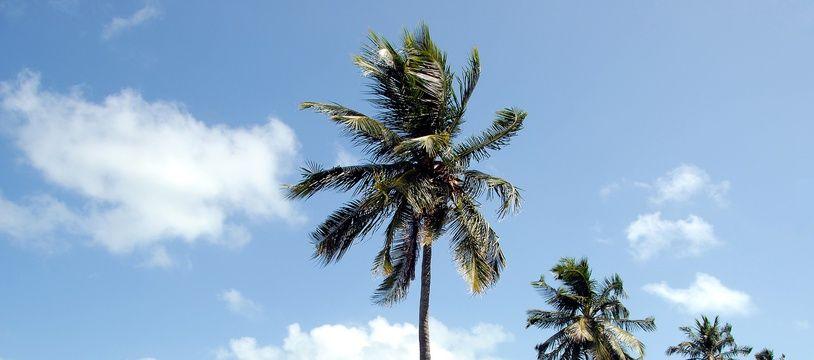 Photographie de l'île de Key West en Floride aux Etats-Unis. Illustration.