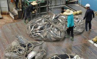 La pêche illégale au thon dans le Pacifique représente jusqu'à 664 millions d'euros par an, selon une étude publiée le 15 mars 2016 par l'Agence du forum de pêches