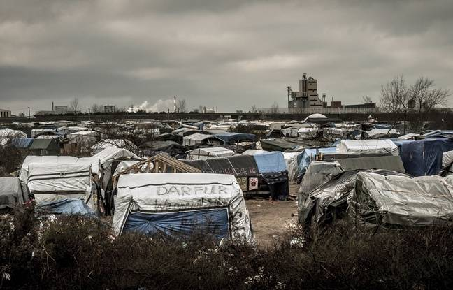 La «Jungle» de Calais, le 12 février 2016.