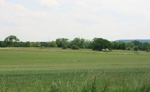 """Le territoire de la """"Nouvelle France"""", dans les Yvelines, où l'agence des espaces verts a installé des agriculteurs bio sur une nappe phréatique"""