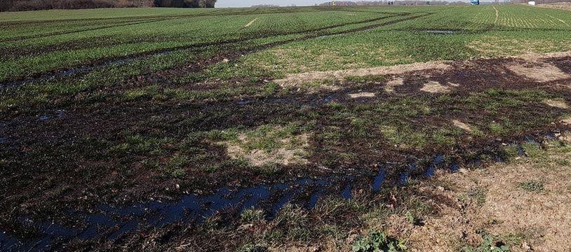 Une fuite d'hydrocarbures s'est propagé au niveau de la commune d'Audouillet, dans les Yvelines.