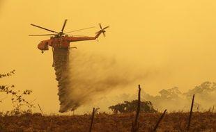 Un hélicoptère bombardier d'eau à Bumbalong en Australie, le 1er février 2020.