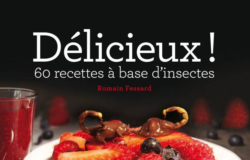 dlicieux 60 recettes base dinsectes