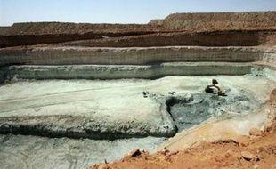 Le Niger et le groupe français Areva ont scellé dimanche à Niamey un partenariat sur l'exploitation et l'achat de l'uranium, mettant un terme à près de huit mois de crise engendrée par un présumé soutien du numéro un mondial du nucléaire civil à une rébellion touareg.