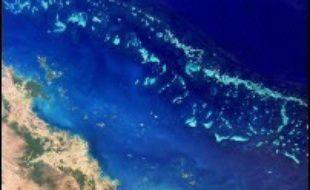 L'Australie envisage d'utiliser d'immenses parasols pour stopper les effets destructeurs du réchauffement climatique sur certaines portions de la Grande barrière de corail, le plus vaste ensemble corallien au monde, a indiqué vendredi le gouvernement.