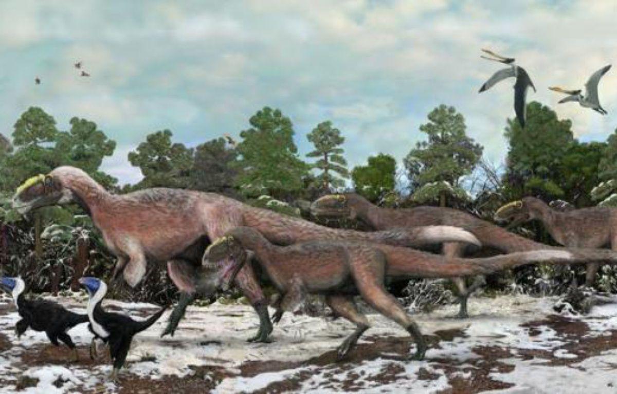 Au royaume des dinosaures, le légendaire tyrannosaure vient de se découvrir un petit cousin couvert de plumes qui, avec 9 mètres de long et un poids d'environ 1,4 tonne, devient tout de même le plus gros animal à plumes jamais identifié. – Brian Choo afp.com