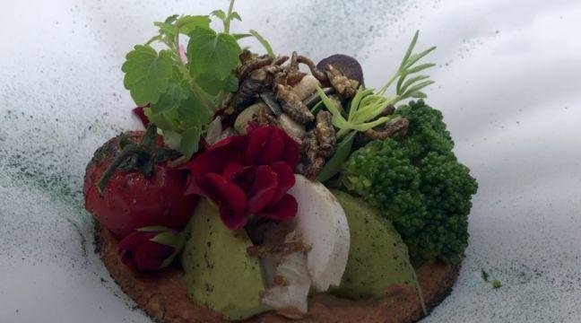 Paris : Au menu de ce restaurant, vers, grillons et autres insectes