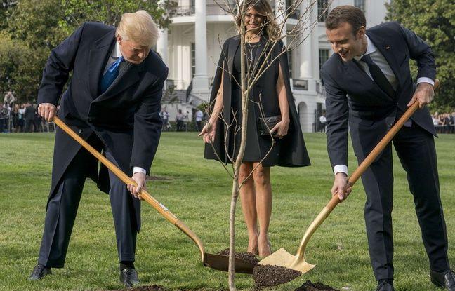 Emmanuel Macron, en visite d'Etat aux Etats-Unis, affiche son entente avec Donald Trump