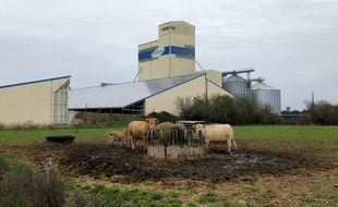 La coopérative d'Herbauges est installée à Corcoué-sur-Logne. Son méthaniseur pourrait voir le jour juste à côté.