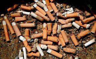 Des mégots de cigarettes.
