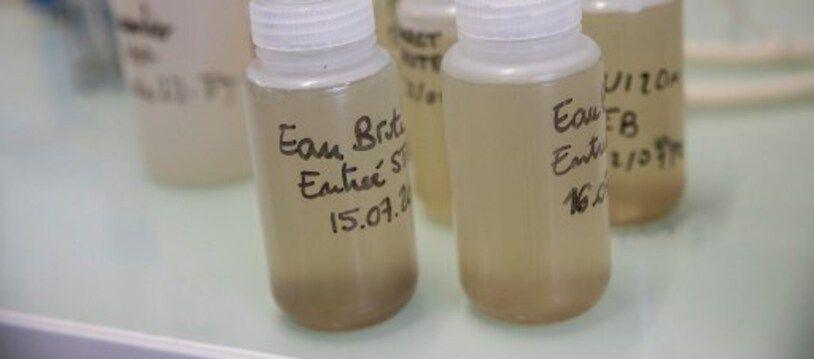 Des échantillons d'eaux usées, dans un laboratoire (Illustration)