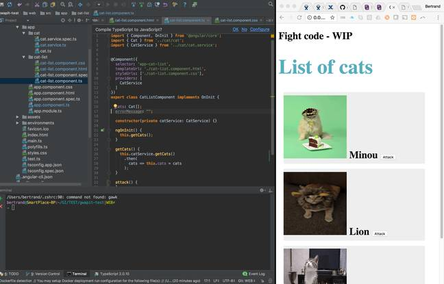 Exemple de la liste de chats qu'il fallait afficher lors du premier Fight code