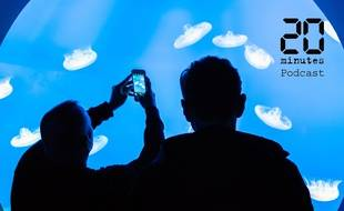 Illustration de deux personnes devant un bassin avec des méduses de l'aquarium de Monterey Bay aux Etats-Unis