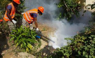Opération de fumigation contre les moustiques du genre Aedes aegypti ou Aedes albopictus (moustique tigre), vecteur de propagation du virus Zika, le 23 janvier 2016 à Saint Domingue