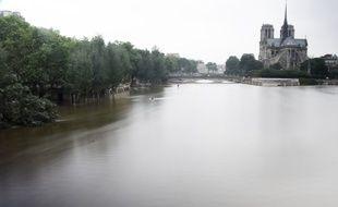 La Seine avec en toile de fond la cathédrale Notre-Dame, à Paris, le 4 juin 2016.