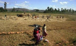 La course aux surfaces agricoles en Afrique, achetées ou louées pour produire du biocarburant pour les Occidentaux ou nourrir l'Asie, est une bombe à retardement sur un continent qui ne mange pas partout à sa faim.